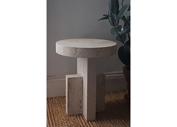 Planar Side Table with Rubber Plant